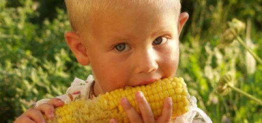 Wywiad: Wpływ GMO na zdrowie dzieci